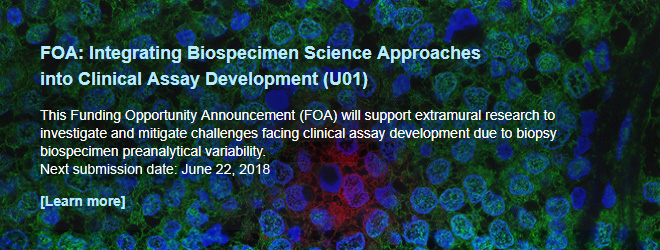FOA: Integrating Biospecimen Science Approaches into Clinical Assay Development (U01). This Funding Opportunity Announcement (FOA) will support extramural research to investigate and mitigate challenges facing clinical assay development due to biopsy biospecimen preanalytical variability. Submission dates: October 11, 2017; June 22, 2018.