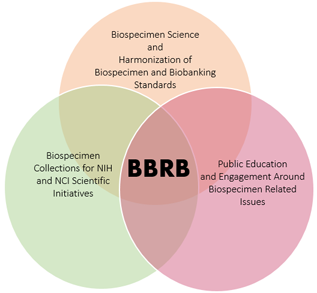 Image of the BBRB images and goals